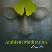 Ambient Meditation Sounds – Time to Meditate, Sounds for Spiritual Calmness, Buddha Lounge, Peaceful Mind & Body by Meditation Awareness