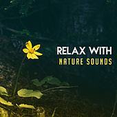 Relax with Nature Sounds – Deep Relief, Inner Zen, Pure Mind, Calm Down, Relaxing Songs, Ambient Music by Nature Sounds (1)