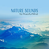 Nature Sounds for Peaceful Mind – Melodies to Relax, Body Rest, Inner Calmness, Healing Therapy by Relax - Meditate - Sleep