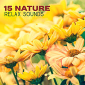 15 Nature Relax Sounds de Nature Sounds Artists