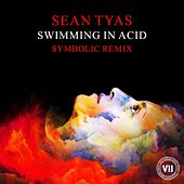 Swimming In Acid by Sean Tyas
