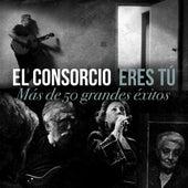 Eres Tú: Mas de 50 Grandes éxitos by El Consorcio
