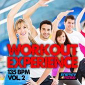 Workout Experience 135 BPM Vol. 02 (20 Tracks Non-Stop Mixed Compilation for Fitness & Workout) by Various Artists
