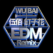 Ding Zi Hua (EDM Remix) de Bai Wu
