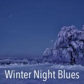 Winter Night Blues von Various Artists