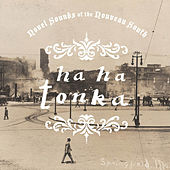 Novel Sounds If The Nouveau South de Ha Ha Tonka