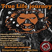 True Life Journey by Various Artists