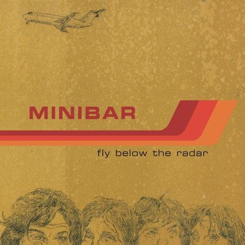 Fly Below The Radar by Minibar
