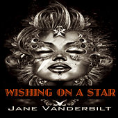 Wishing on a Star de Jane Vanderbilt