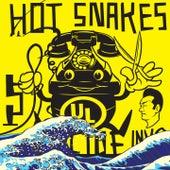 Suicide Invoice von Hot Snakes