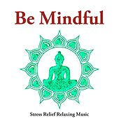 Be Mindful - Stress Relief Relaxing Music for Mindfulness Meditation, Guided Meditation, Meditation Techniques, Relaxation Techniques by Spa Relaxation