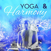 Yoga & Harmony von Lullabies for Deep Meditation
