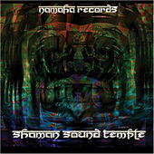 Shaman Sound Temple von Various Artists