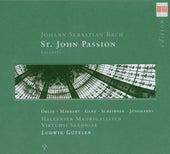 Johann Sebastian Bach: Johannes Passion/St. John Passion (Excerpts) by Various Artists