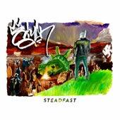 Steadfast by Siyah