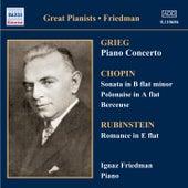 Complete Recordings: Volume 2 by Ignaz Friedman