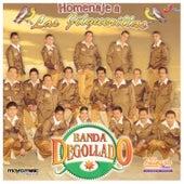 Homenaje a las Jilguerillas by Banda Degollado