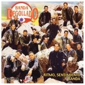Ritmo, Sentimiento y Banda by Banda Degollado