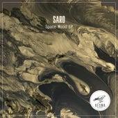 Space Mood - Single by Saro