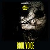 Soul Voice de Various