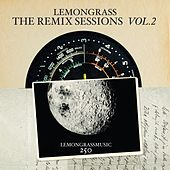 The Remix Sessions, Vol. 2 by Various Artists