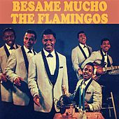 Besame Mucho de The Flamingos