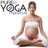 Pure Yoga Prenatal by Various Artists