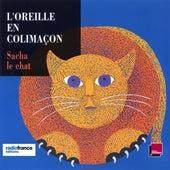 L'oreille en colimaçon: Sacha le chat by Brigitte Lecordier