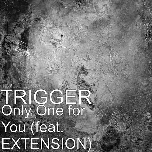 Only One for You (feat. EXTENSION) by Trigger