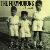 Calcutta by The Foxymorons