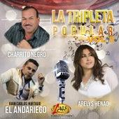 La Tripleta Popular, Vol. 5 by Various Artists