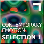 Contemporary emotion – Selection 1 by Various Artists