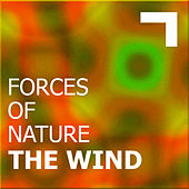 Forces of nature - the wind de Various Artists