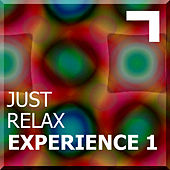Just Relax – Experience 1 de Various Artists