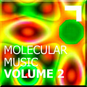 Molecular Music Volume 2 de Various Artists
