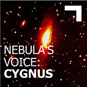 Nebula's Voice: Cygnus by Various Artists