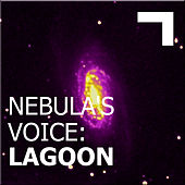 Nebula's Voice: Lagoon de Various Artists