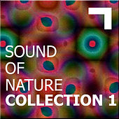 Sound of the nature – collection 1 de Various Artists