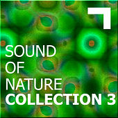 Sound of the nature – collection 3 de Various Artists
