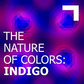 The Nature of Colors: Indigo de Various Artists