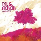 Yahweh de Tal & Acacia