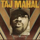 Satisfied 'N Tickled Too de Taj Mahal