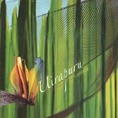 Uirapuru von Carioca