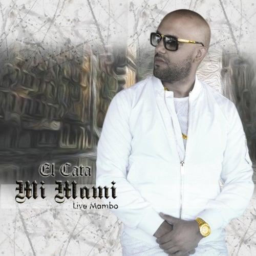 Mi Mami (Live Mambo) by El Cata