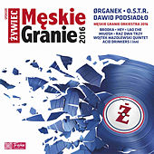 Męskie Granie 2016 by Various Artists