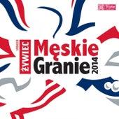 Męskie granie 2014 (Live) by Various Artists
