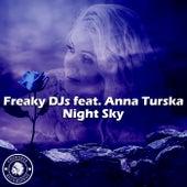 Night Sky (feat. Anna Turska) by Freaky DJ's