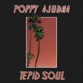 Tepid Soul by Poppy Ajudha