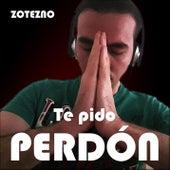 Te Pido Perdón by Zotezno