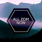 All EDM Now by Various Artists